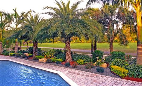 florida backyard landscaping backyard landscape south florida tropical landscape miami by bamboo landscaping and