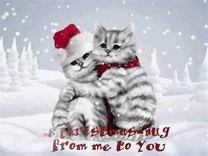 Days Until Christmas Eve Mondaymorning Cats