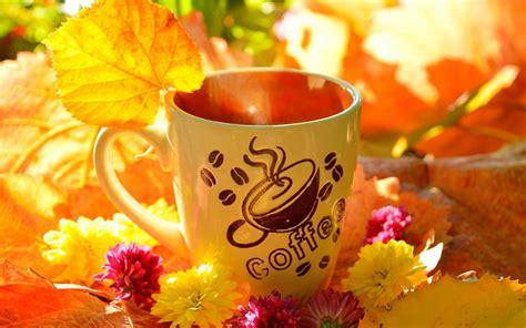 gelbe blätter bei blumen kaffeetasse gelbe bl 228 tter blumen herbst 2880x1800 hd hintergrundbilder hd bild