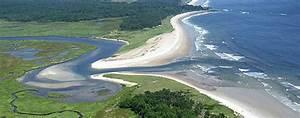 estuary - Estuary