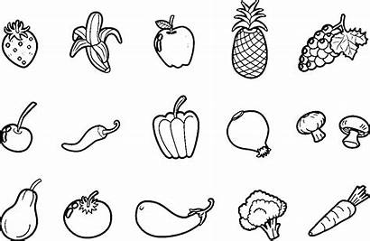 Vegetables Drawing Coloring Pages Fruits Clipart Drawings