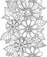 Coloring Flowers Relaxing Blooming Pillars Rachel Mintz sketch template