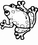 Frog Coloring Pages Tree Clipartmag sketch template