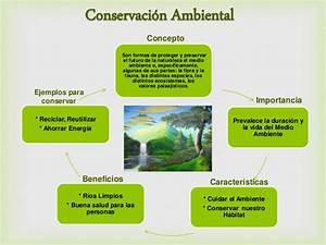 Imagenes De Conservacion Medio Ambiente mapa conceptual