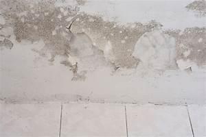 Wand Feuchtigkeit Messen : feuchter keller wir zeigen ihnen ursachen l sungen auf ~ Lizthompson.info Haus und Dekorationen