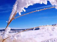 Winter Nature HD Wallpapers 1080P