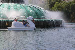 Swan Boats Sunday Hours by Lake Eola Park City Of Orlando Families Parks And