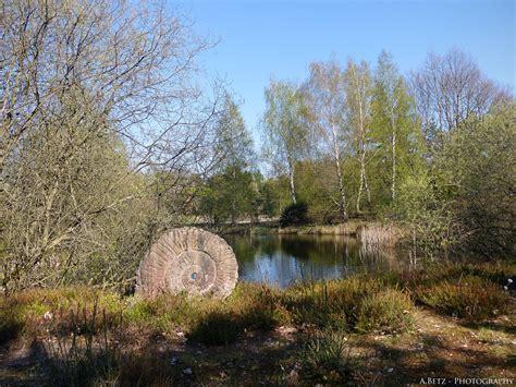 Botanischer Garten Bayreuth by Augenblicke Im Botanischen Garten In Bayreuth