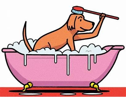 Dog Bath Animated Street Wash Wall Illustration