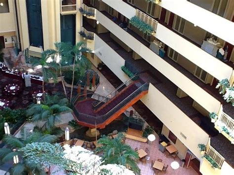 embassy suites busch gardens ke ting picture of embassy suites by ta usf