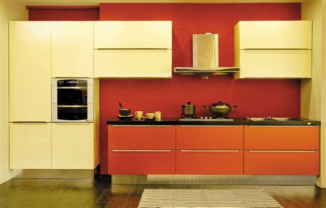kitchen cabinets european style fresh european style kitchen cabinets greenvirals style 6043
