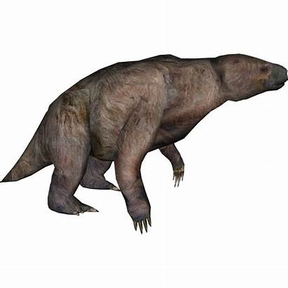 Sloth Wiki Evolution Speculative