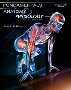 Study Guide For Rizzo U0026 39 S Fundamentals Of Anatomy And Physiology  4th - 9781285174167