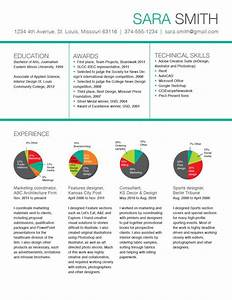 Cv Experience Sample Unique Resume Design Idea Template With Pie Charts For