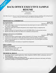 high resumes with no job experience back office executive resume sle resumecompanion com resume sles across all industries