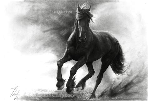 Horse In Storm By Thubakaon Deviantart