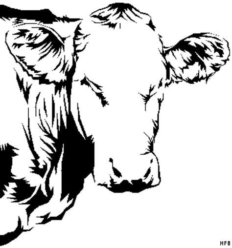 kuhkopf  ausmalbild malvorlage tiere