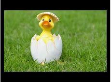 Fröhliche Ostern !!! YouTube