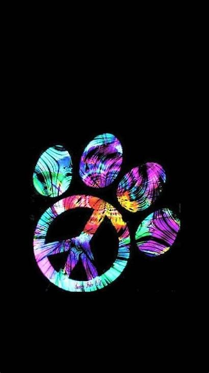 Dye Tie Paw Iphone Neon Panda Wallpapers