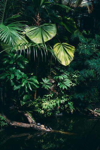 plants vaporwave aesthetic grunge green