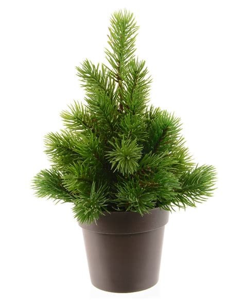 tannenbaum im topf kaufen tannenbaum im topf k nstlicher tannenbaum weihnachtsbaum 90cm im topf weihachtsbaum tannenbaum