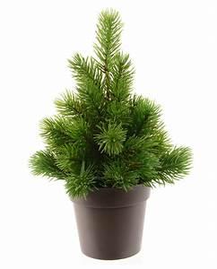 Baum Im Topf : tannenbaum im topf kunstbaum als weihnachtsdeko horror ~ Michelbontemps.com Haus und Dekorationen