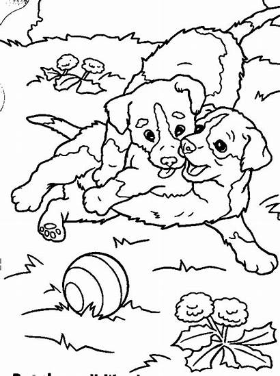 Coloring Pages Puppies Adult