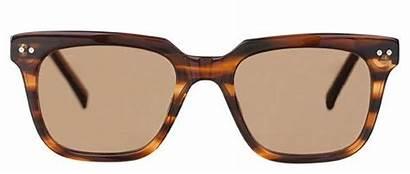 Wallace Nelson Bailey Prescription Sunglasses Glasses Baileynelson