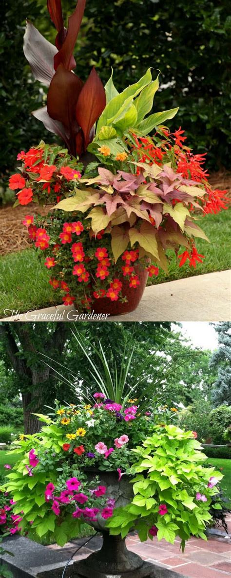 24 stunning container garden planting designs a of