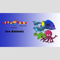 Sea Animals Learn Names And Sounds Of Water Animals Youtube