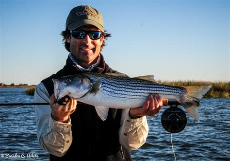 Fishing Fly Fishing Blog By Lateral Line Fishing Clothing