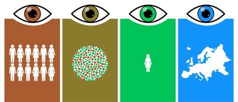 Eye Color Breakdown Guide