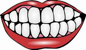 . mouth and teeth PNG 137(K) .. - ClipArt Best - ClipArt Best
