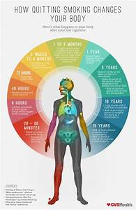 Effects Of Smoking On Body  What Happens When You Quit