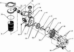 Jandy Shpf  U0026 Shpm Stealth Pump Parts