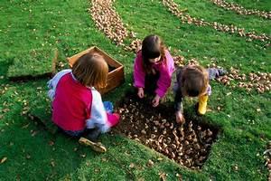 Planter Des Bulbes : planter des bulbes de tulipes en avril l 39 atelier des fleurs ~ Dallasstarsshop.com Idées de Décoration