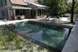 9 mythen uber den naturnahen bio schwimmteich im garten With französischer balkon mit kosten für einen pool im garten