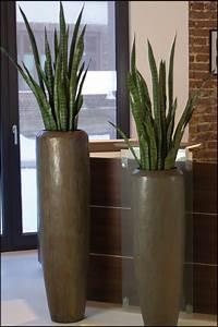 Große Deko Vasen : wir bieten ihnen ein gro e auswahl an pflanzgef en und vasen in unserem onlineshop zu g nstigen ~ Markanthonyermac.com Haus und Dekorationen