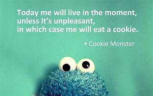 Cookie Monster on Living in the Moment | An Urban Mystic's ...