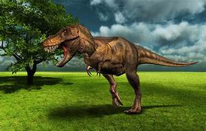 Pin Dinosaurios-wallpapers-super-stremo on Pinterest