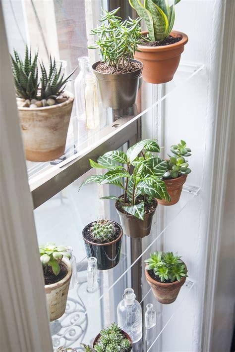 Window Plants by Diy Floating Window Shelves Design Sponge