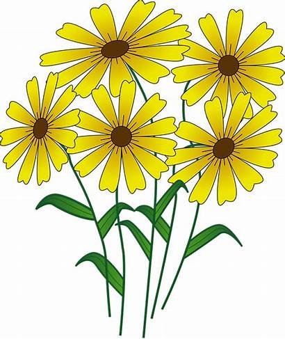 Yellow Bright Clipart Wildflowers Flowers Clipground Floral