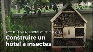 Abri à Insectes : construire une maison a insecte te28 jornalagora ~ Premium-room.com Idées de Décoration