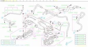 Subaru Outback Hose-vacuum  Manifold  Intake  Pipe