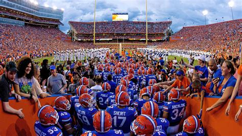 early kentucky football opponent preview florida gators  sea  blue