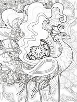 Peacock Whimsical Boyama Kitapları Nerdymamma sketch template
