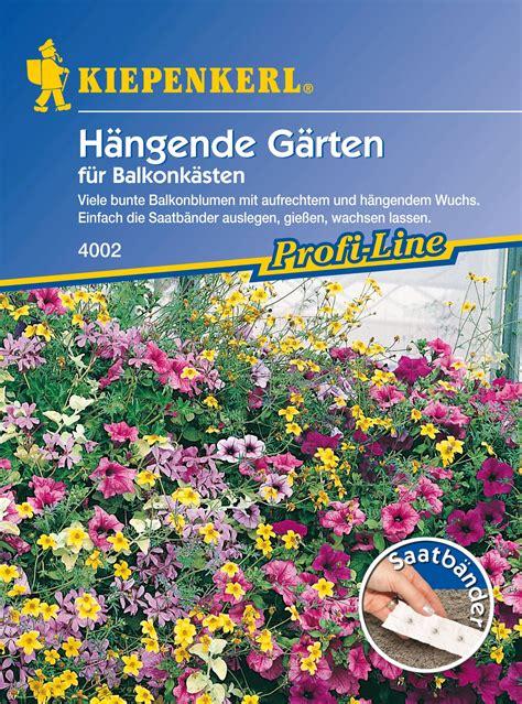 Hängende Blumen Für Balkonkästen kiepenkerl h 228 ngende g 228 rten f 252 r balkonk 228 sten 1 packung