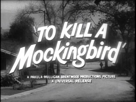 plot overview  student guide  kill  mockingbird
