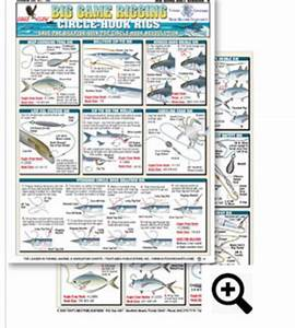 37 Best Bait Rigging And Knot Tying Charts Images On