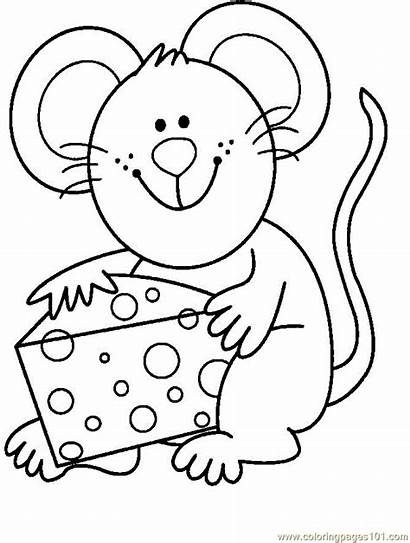 Cheese Mouse Eat Coloring Pages Coloringpages101